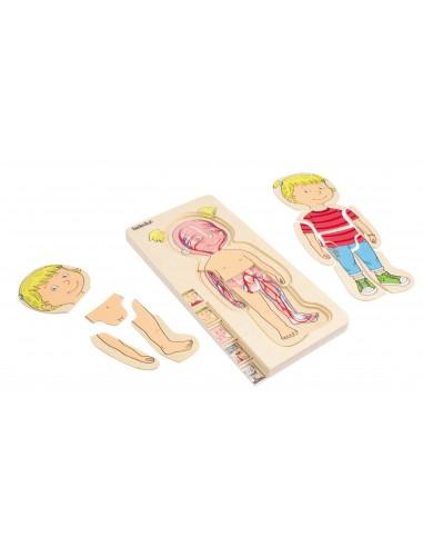Puzle de anatomía femenina