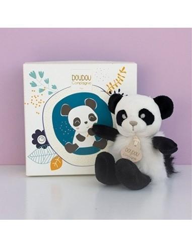 Oso panda del minizoo